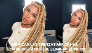 Las Trenzas Africanas Danan El Pelo
